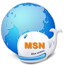 MSN spy monitor